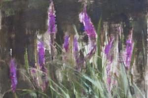 """Loosestrife  2012  oil on canvas  20x16"""""""